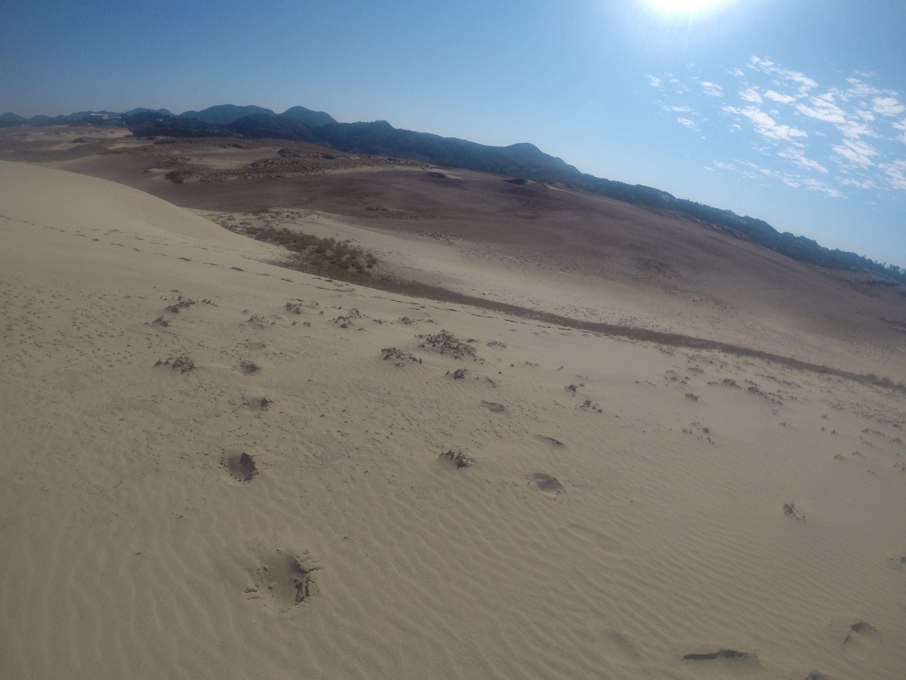 平日に限ってよく晴れる鳥取砂丘