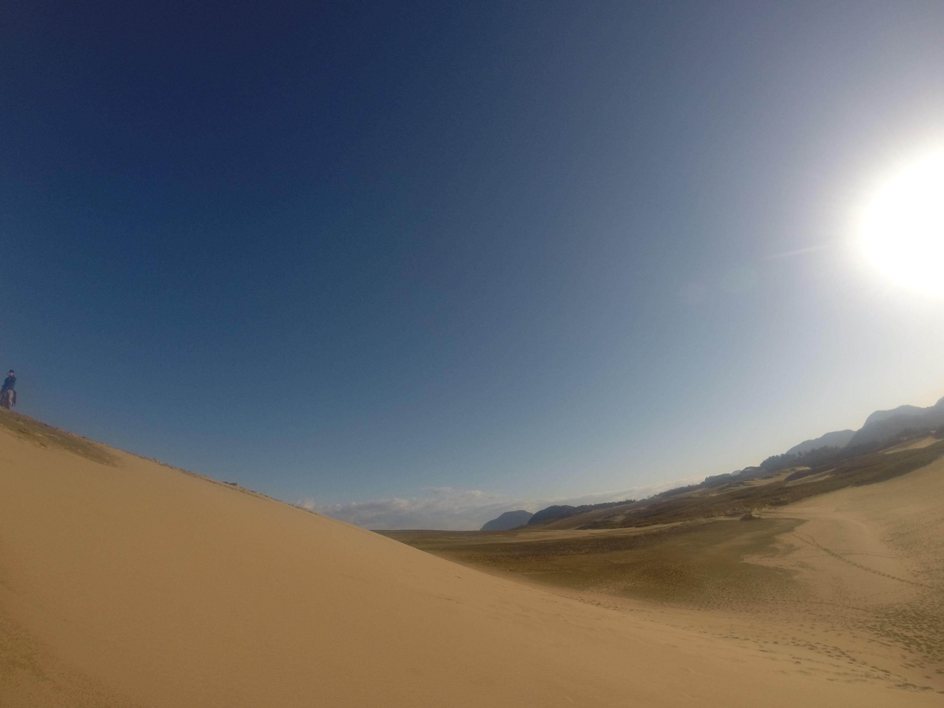 久しぶりに爽快な青空が広がった鳥取砂丘