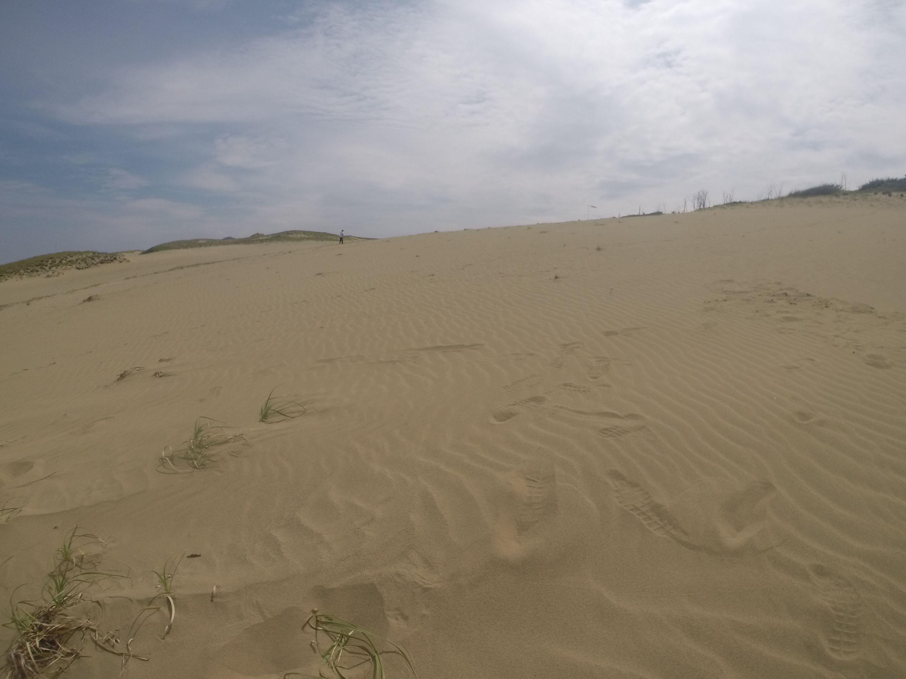 まったり好天に恵まれた鳥取砂丘