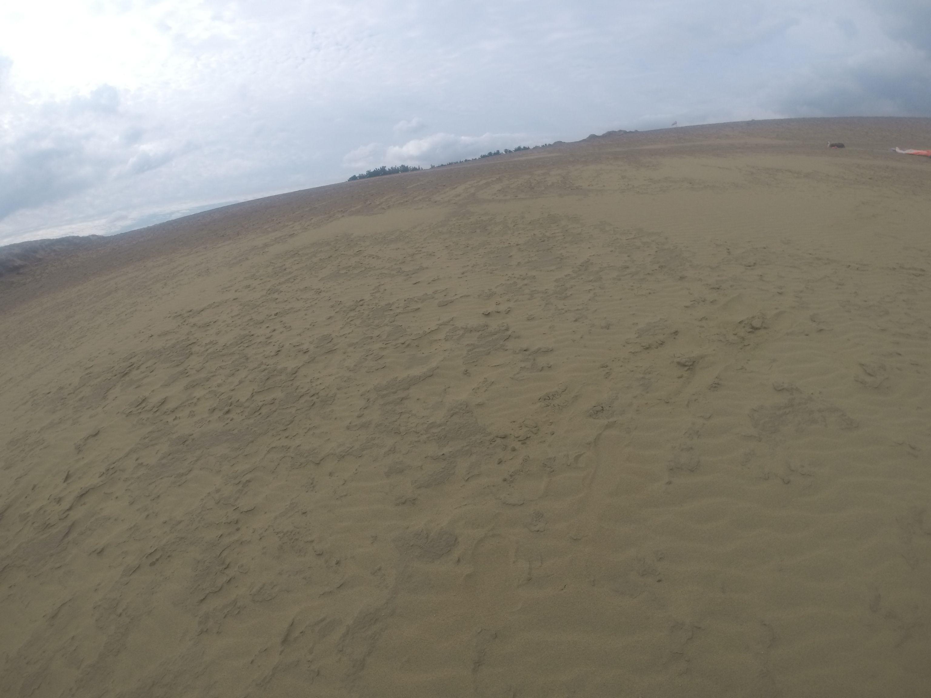 雲に覆われ風も強くなった鳥取砂丘