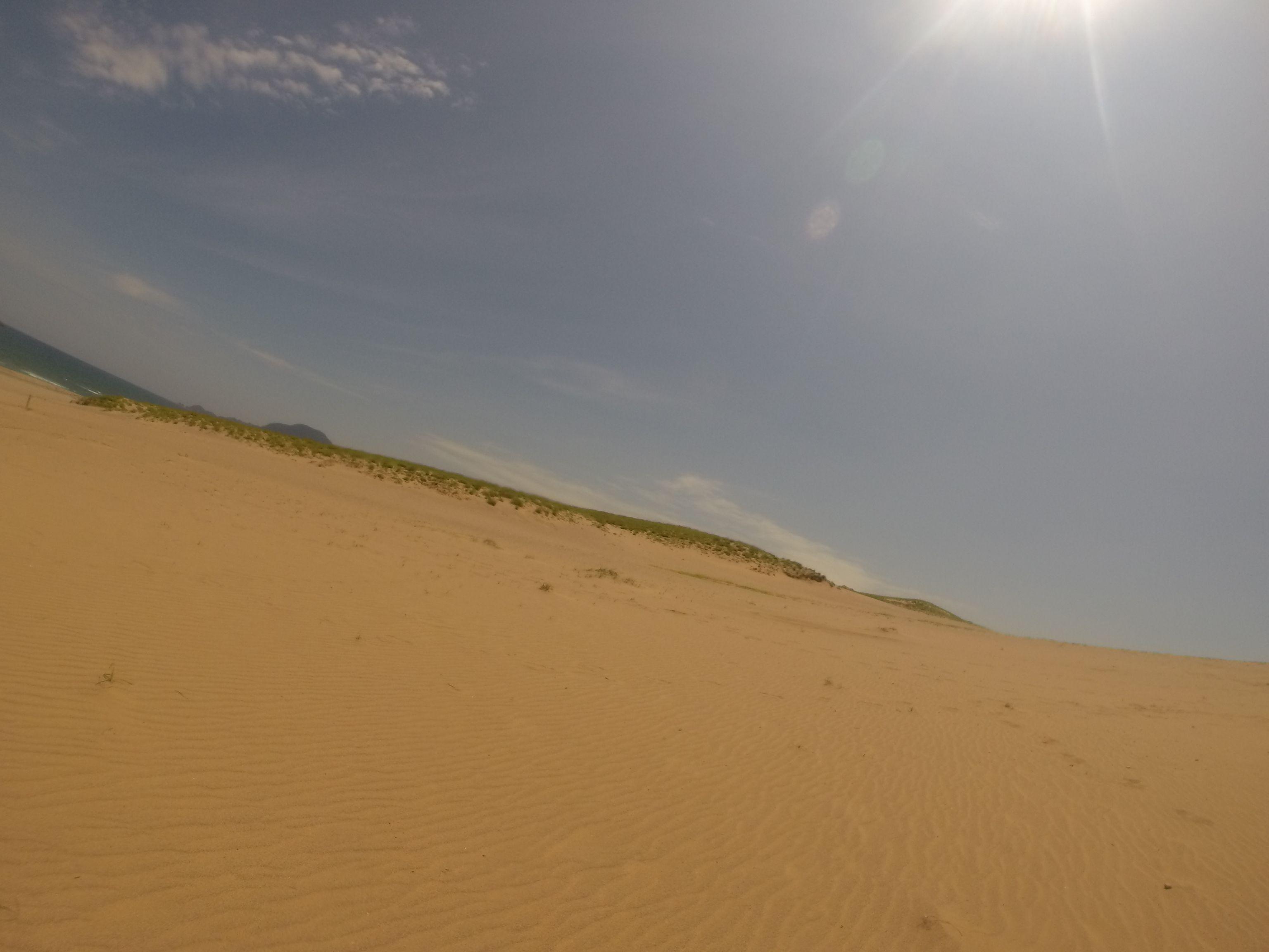 太陽に照らされた鳥取砂丘