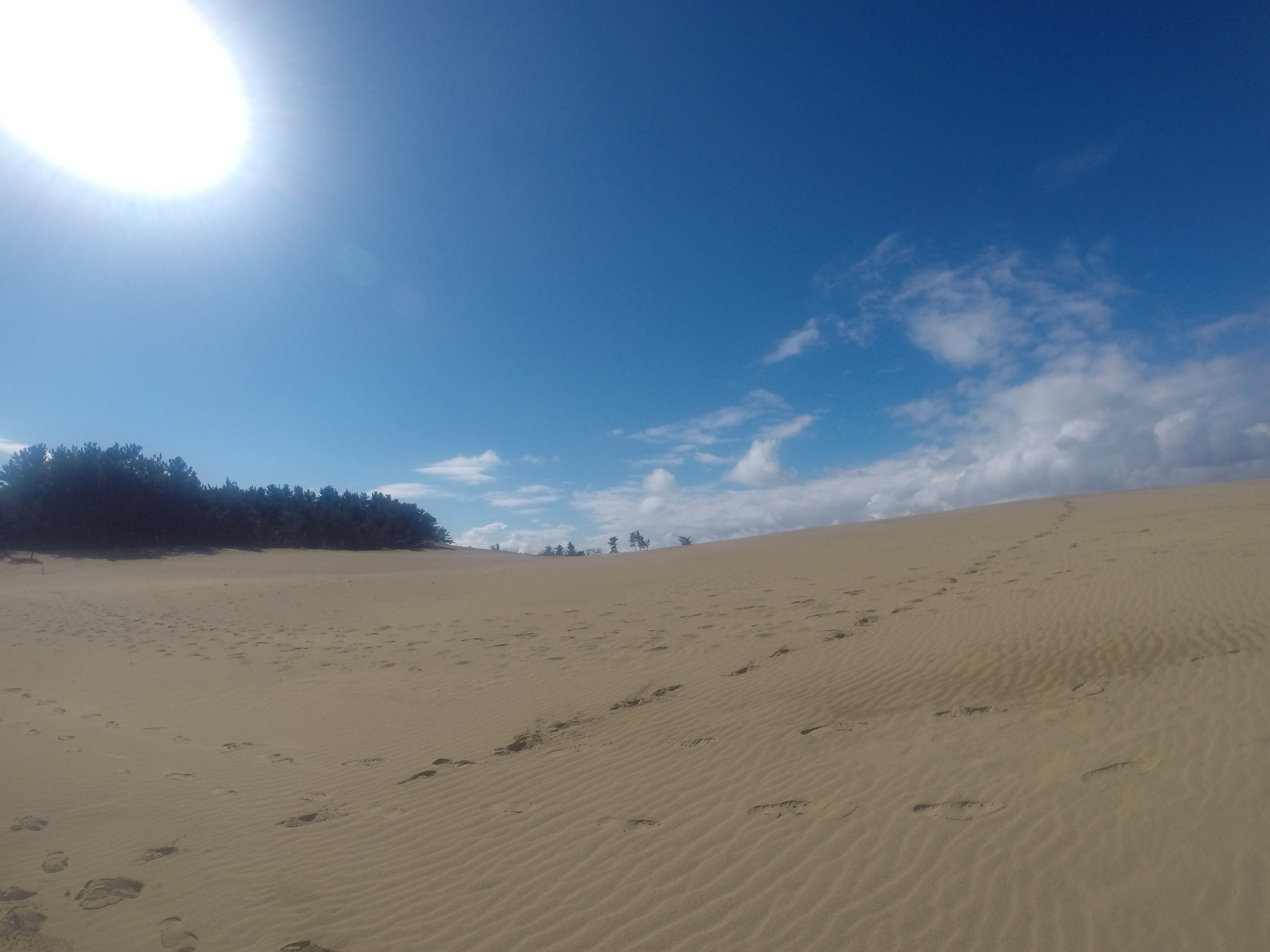 明るい日差しに包まれた鳥取砂丘