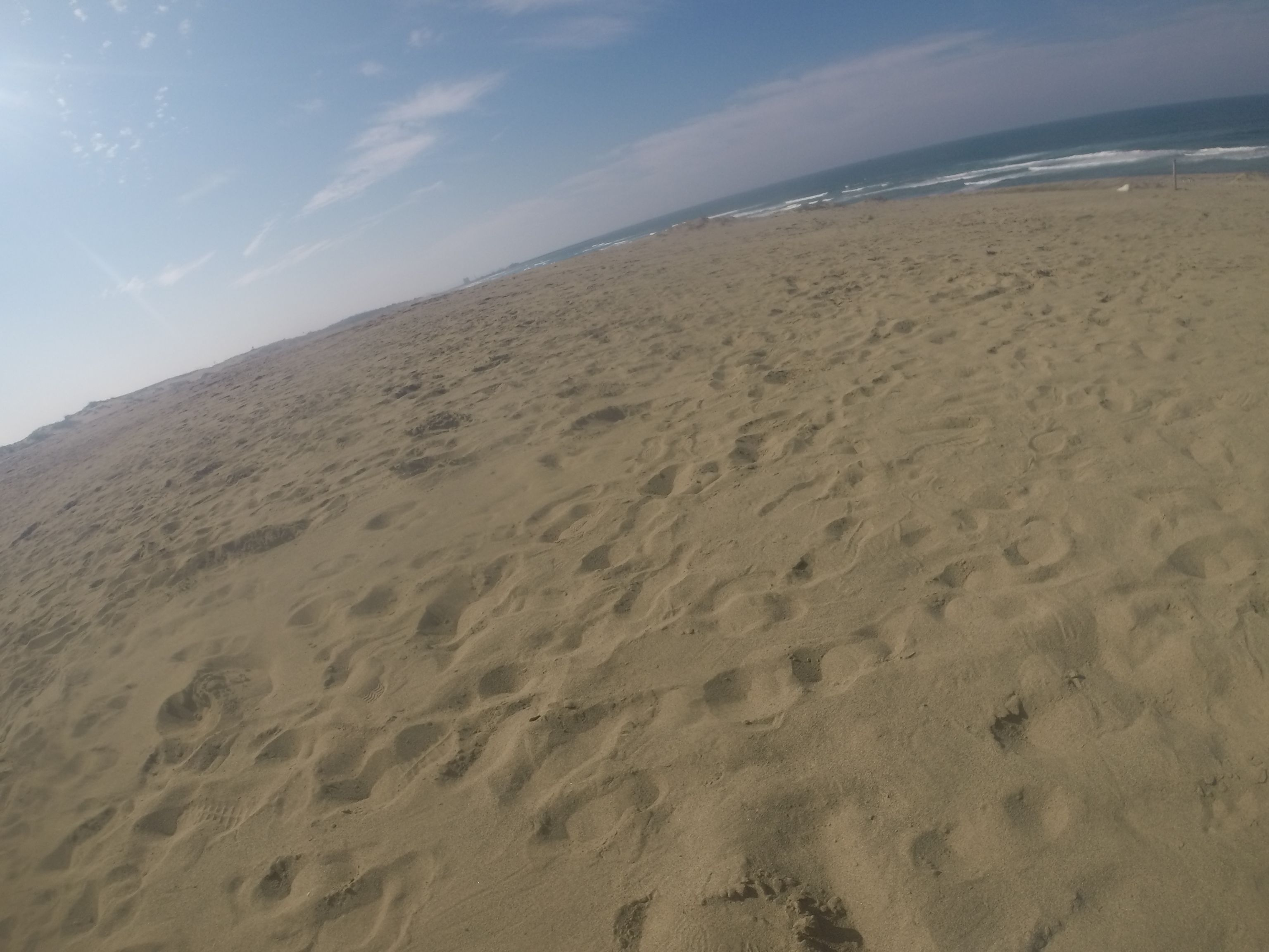 カラカラに乾いた鳥取砂丘