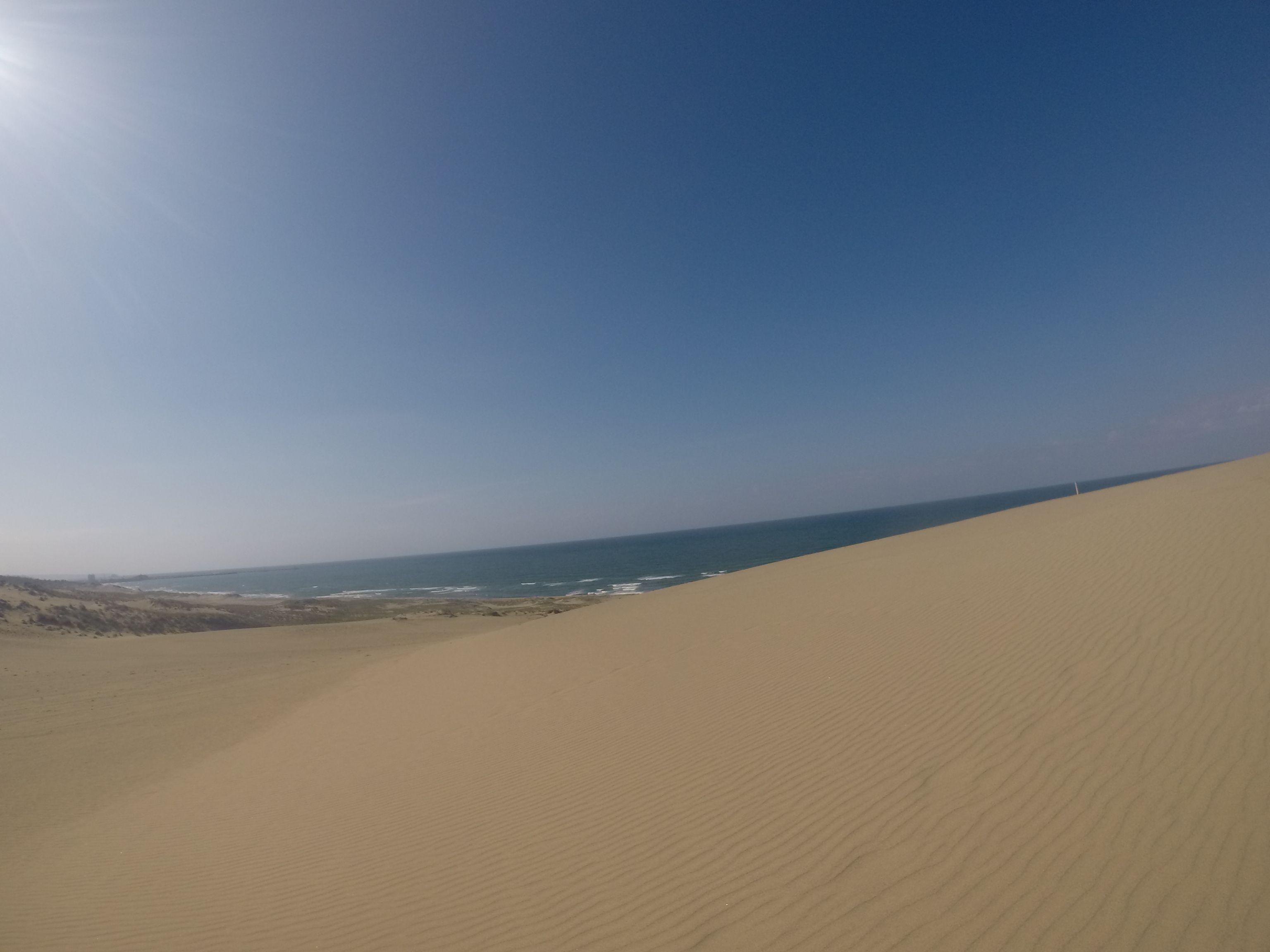 青空いっぱいの鳥取砂丘