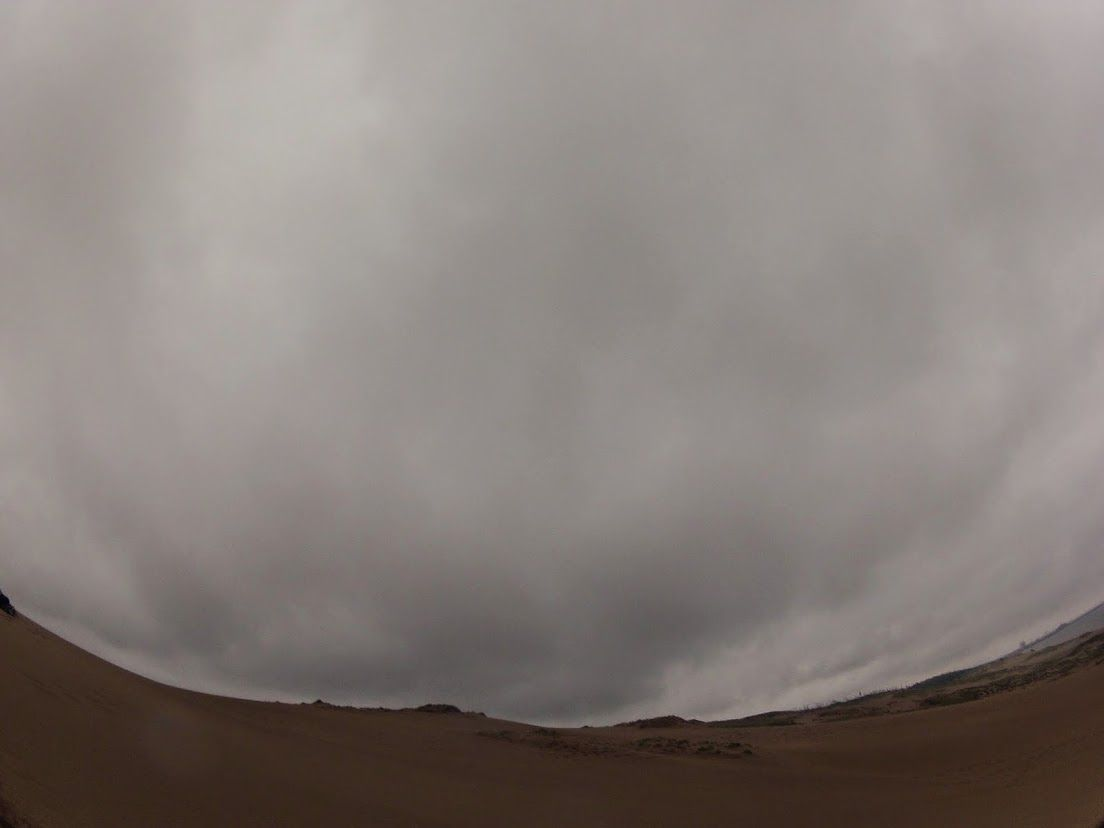 雨鳥取砂丘