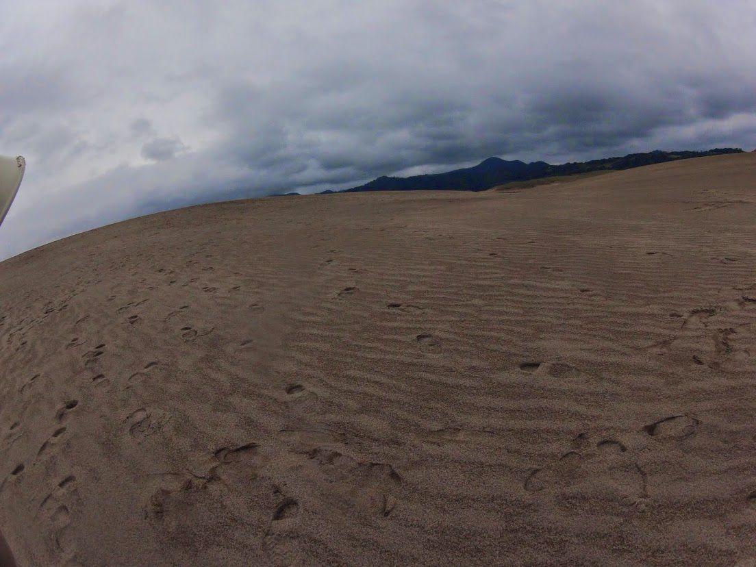 回復傾向鳥取砂丘