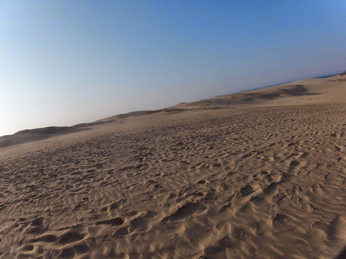 春の風がやってきた鳥取砂丘