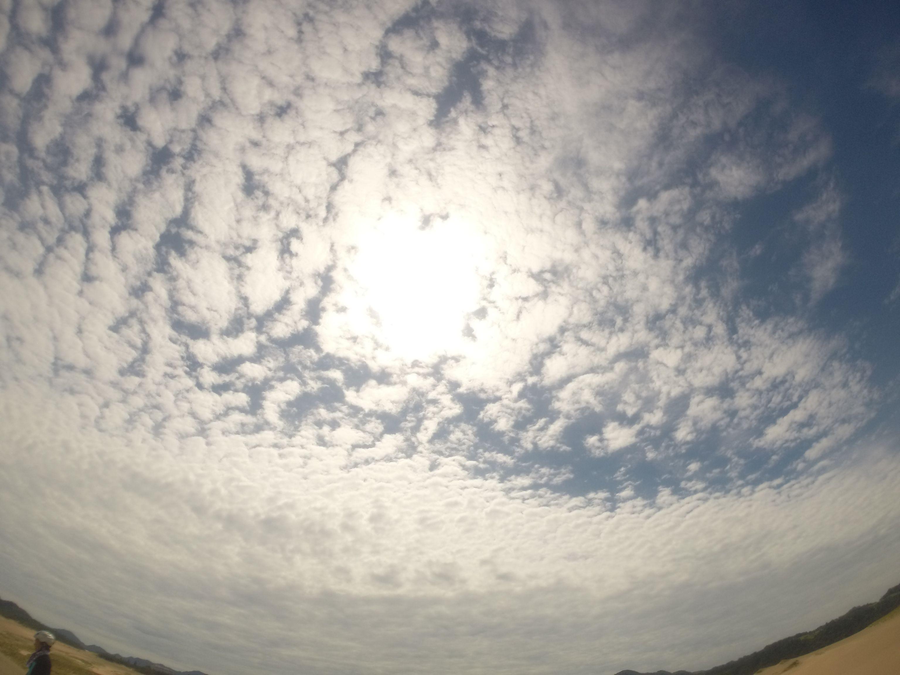 強烈な太陽の日差し