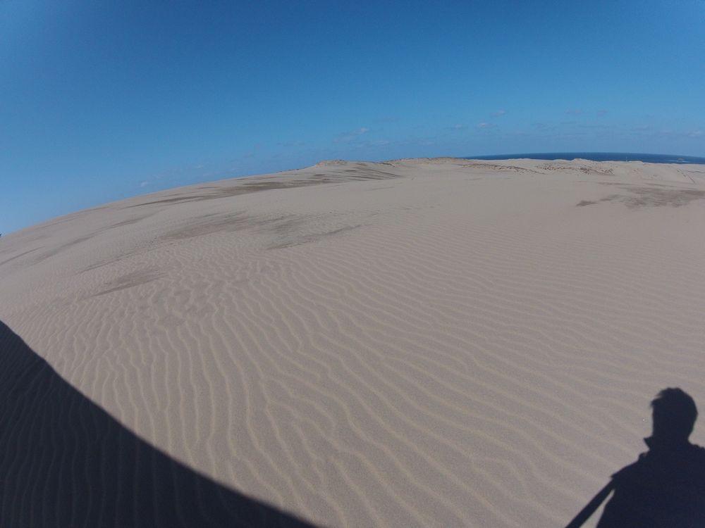 北東強風のため風紋が一面にできた鳥取砂丘
