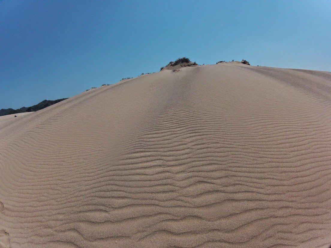カンカン照りになった鳥取砂丘