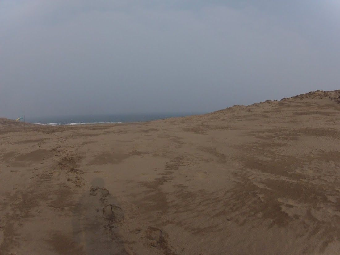日本海から強い風が吹きっぱなし