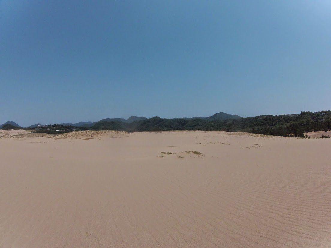 蝉鳥取砂丘