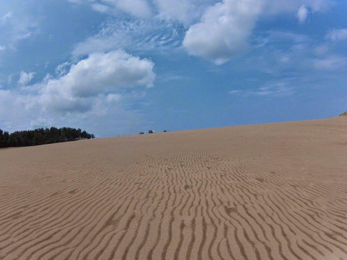 爽やかな青空が望めた鳥取砂丘
