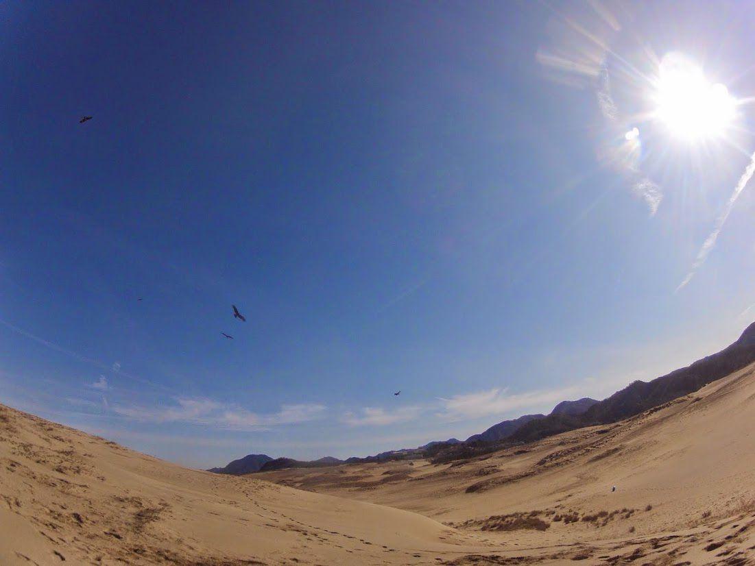 日の出鳥取砂丘