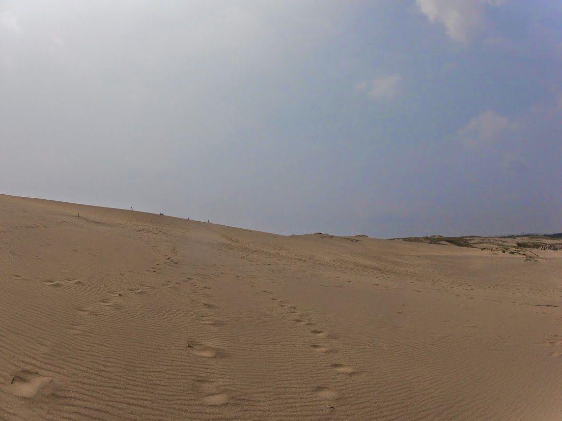 風紋と足跡