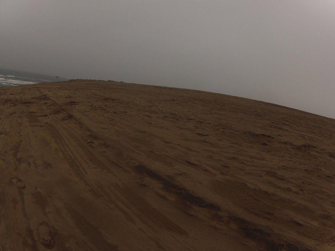 灰色がかった風景の鳥取砂丘