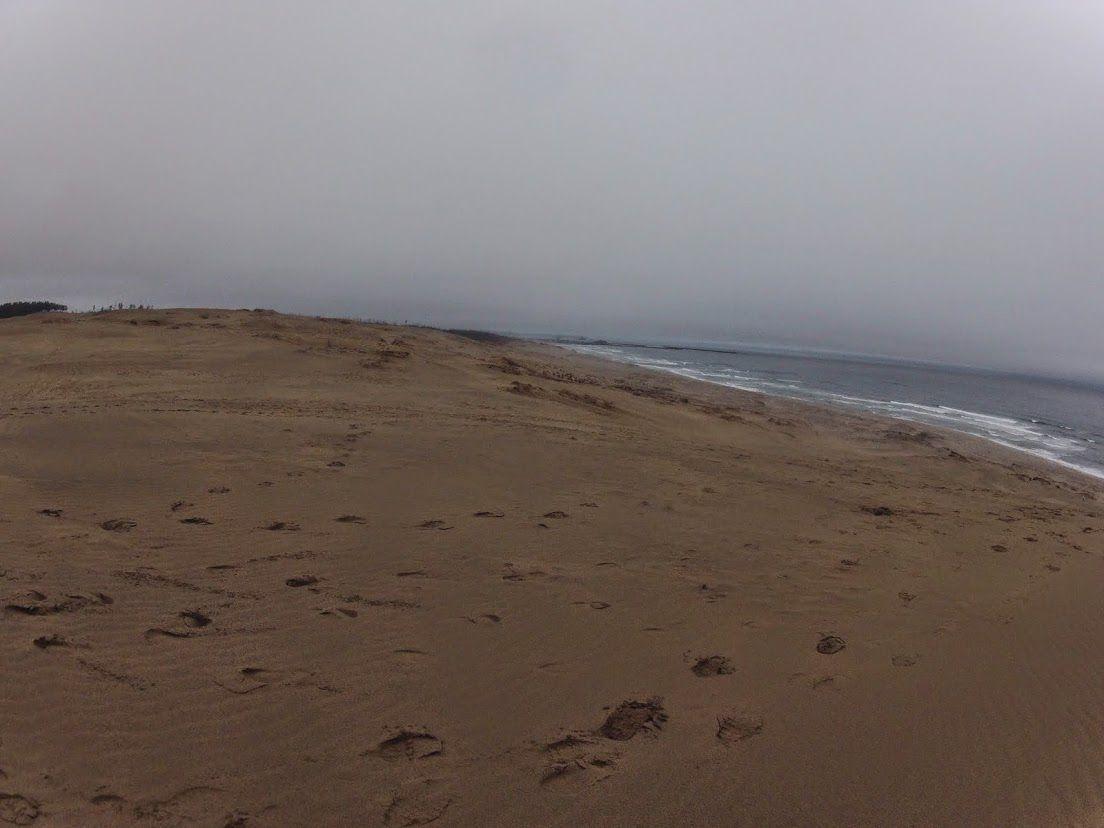 グレー 鳥取砂丘
