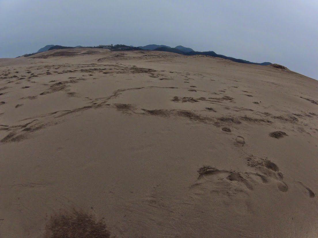 暗くなっている鳥取砂丘