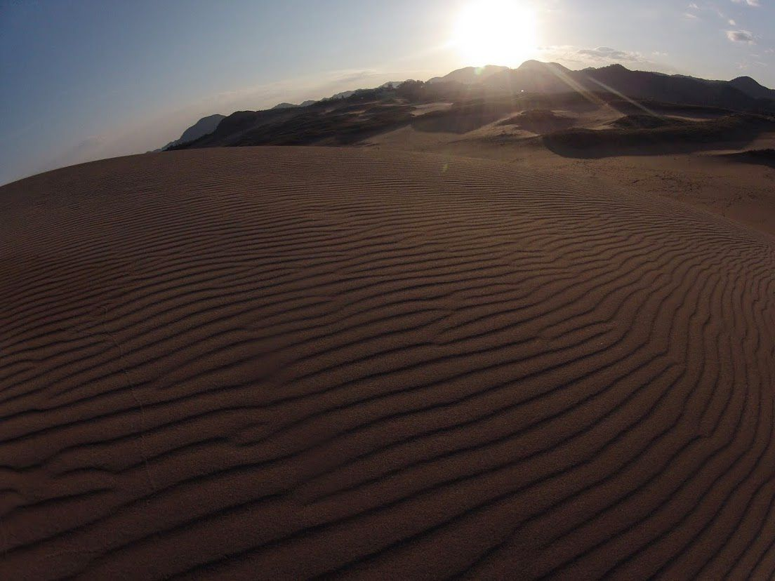風紋 鳥取砂丘