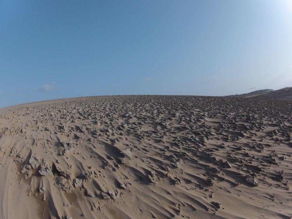 鳥取砂丘一面に広がる砂柱