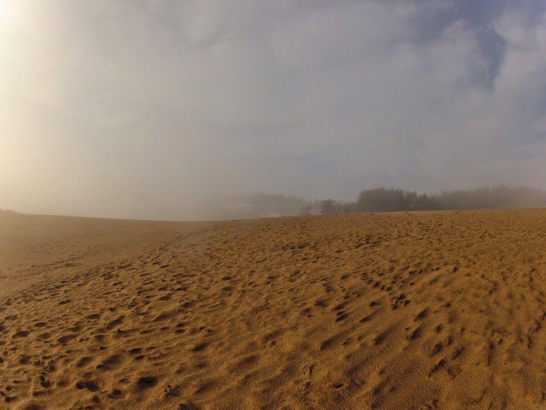 濃霧鳥取砂丘