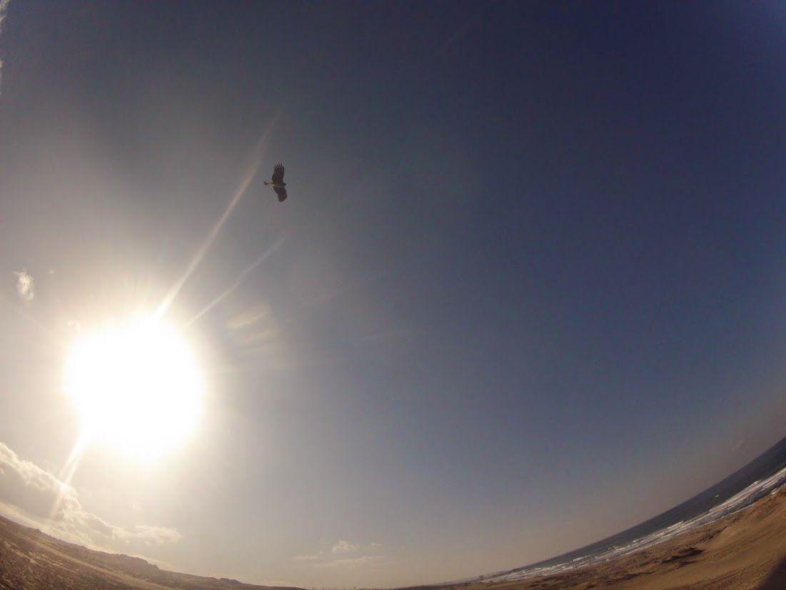 良く晴れた鳥取砂丘