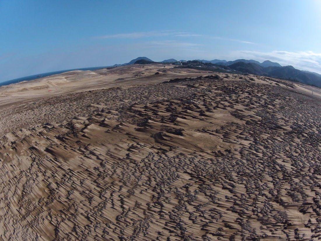 砂柱鳥取砂丘