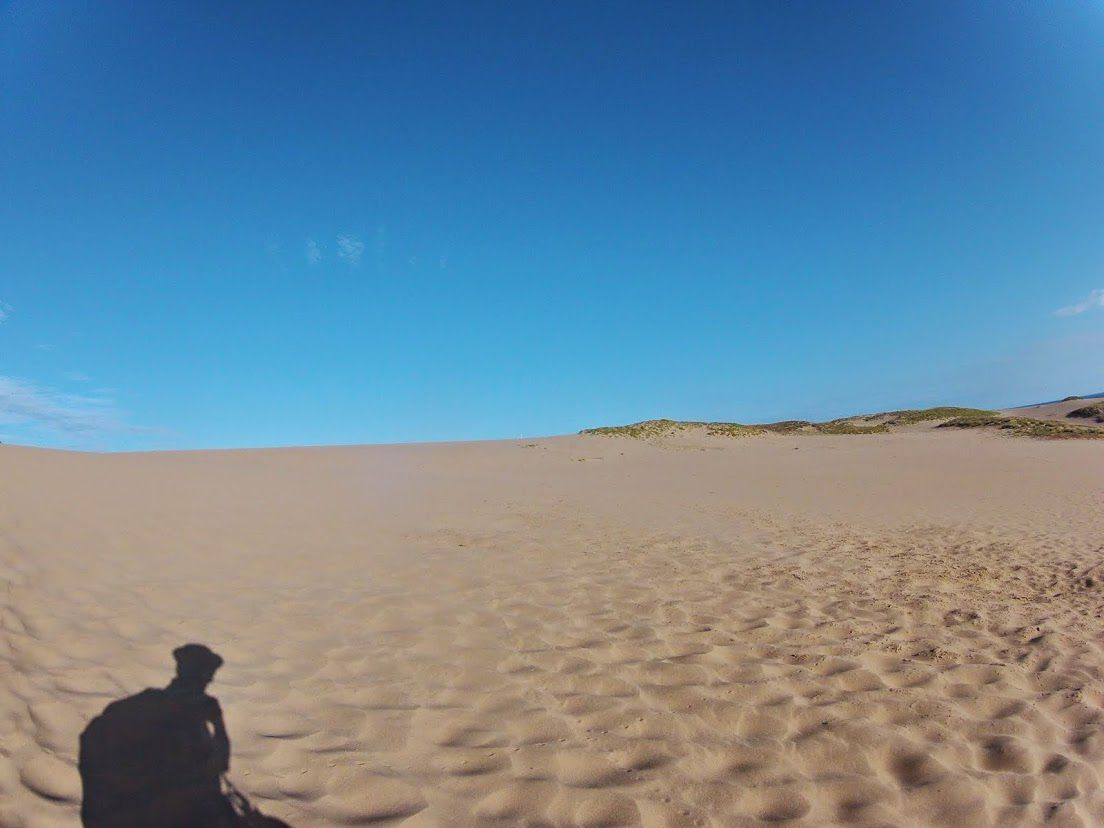 日差しサンサン砂丘