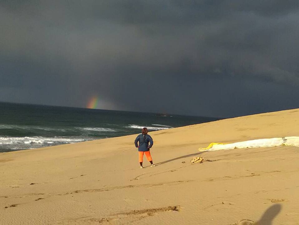 砂丘と海を彩る
