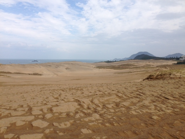 台風が去って、荒々しい表情になった鳥取砂丘