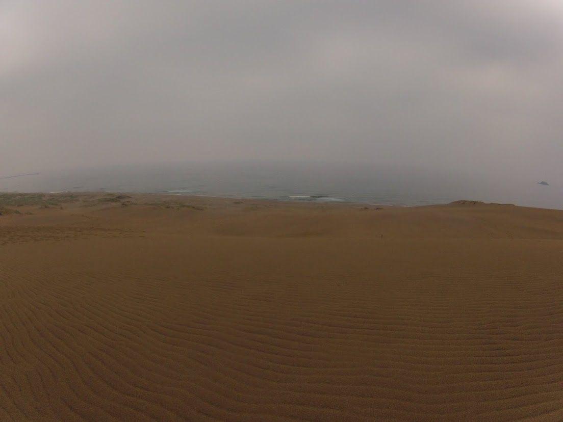 雨が降った鳥取砂丘