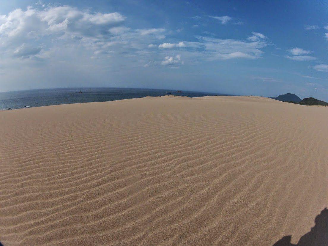 風紋鳥取砂丘