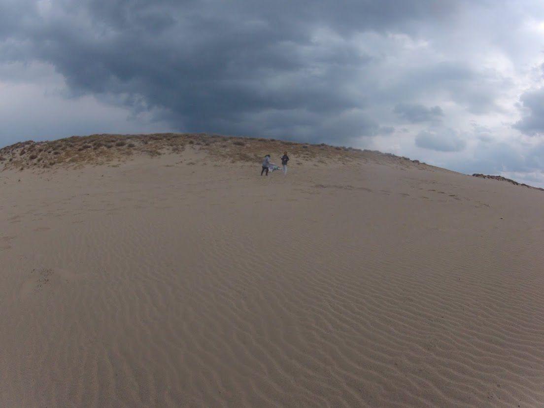 北風が吹きすさぶ鳥取砂丘