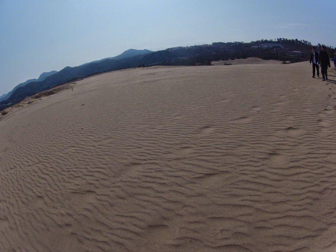 行楽日和となった鳥取砂丘