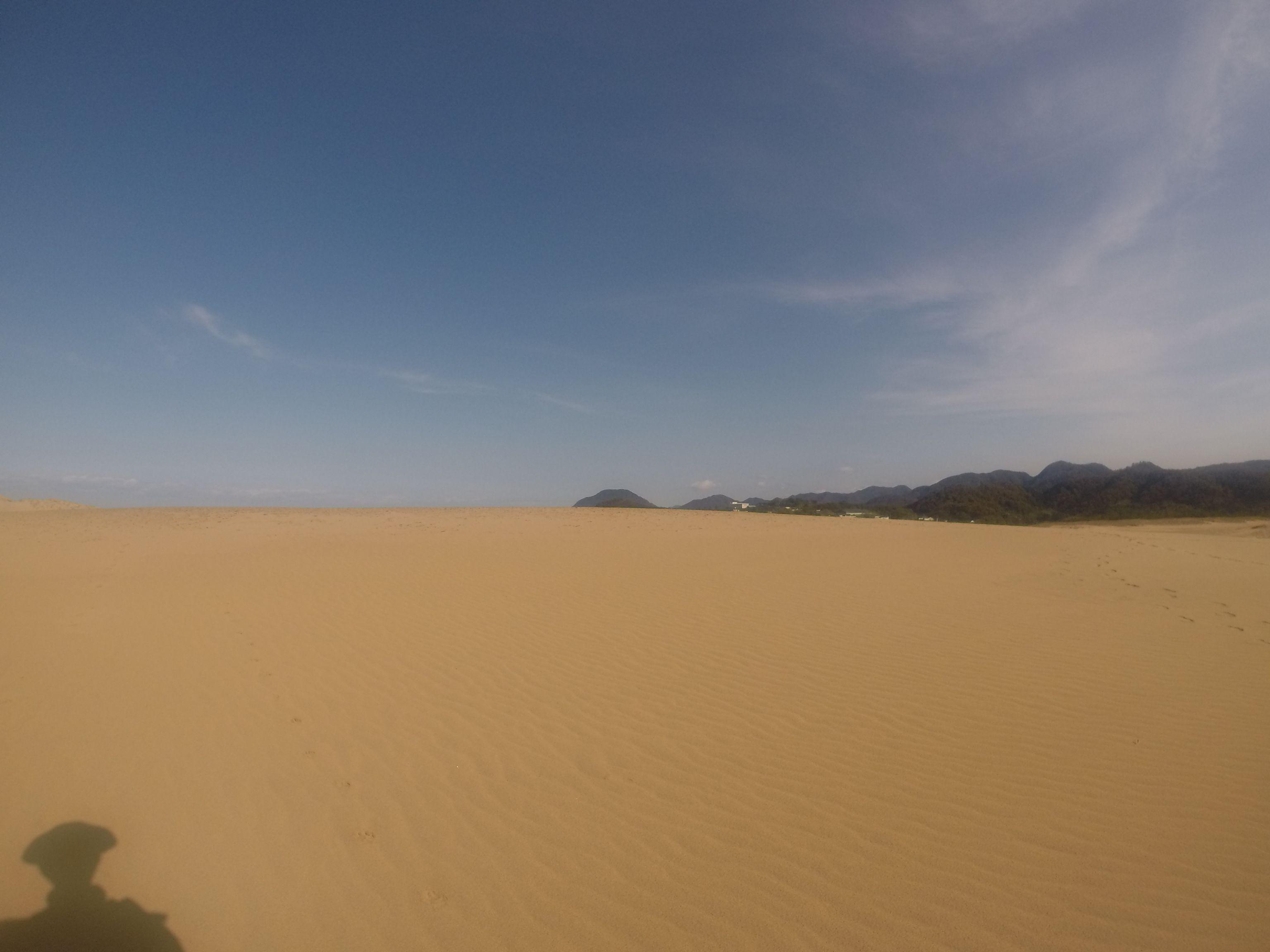 日光が降り注ぐ、暖かな鳥取砂丘