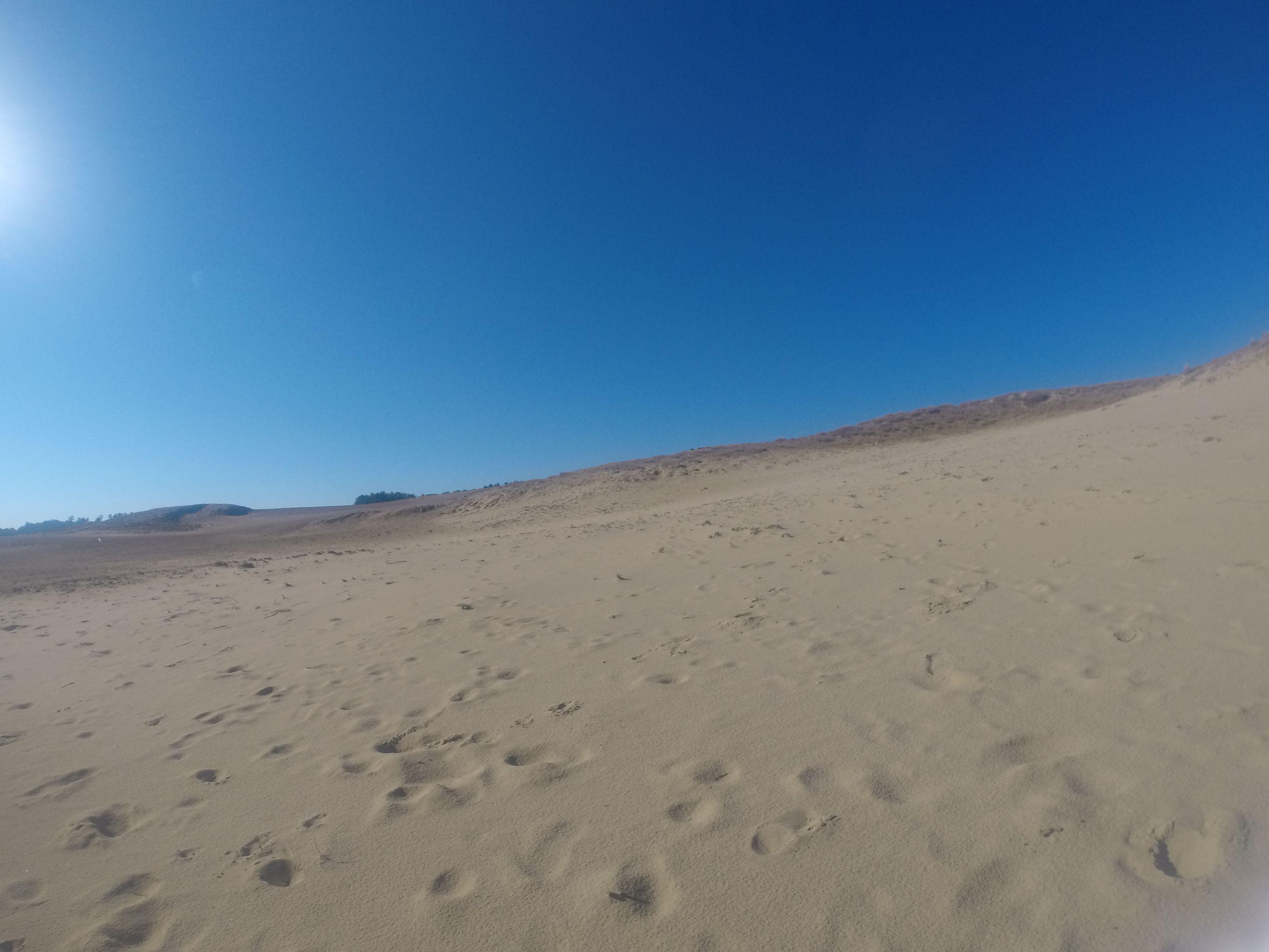 真っ青な空になった鳥取砂丘
