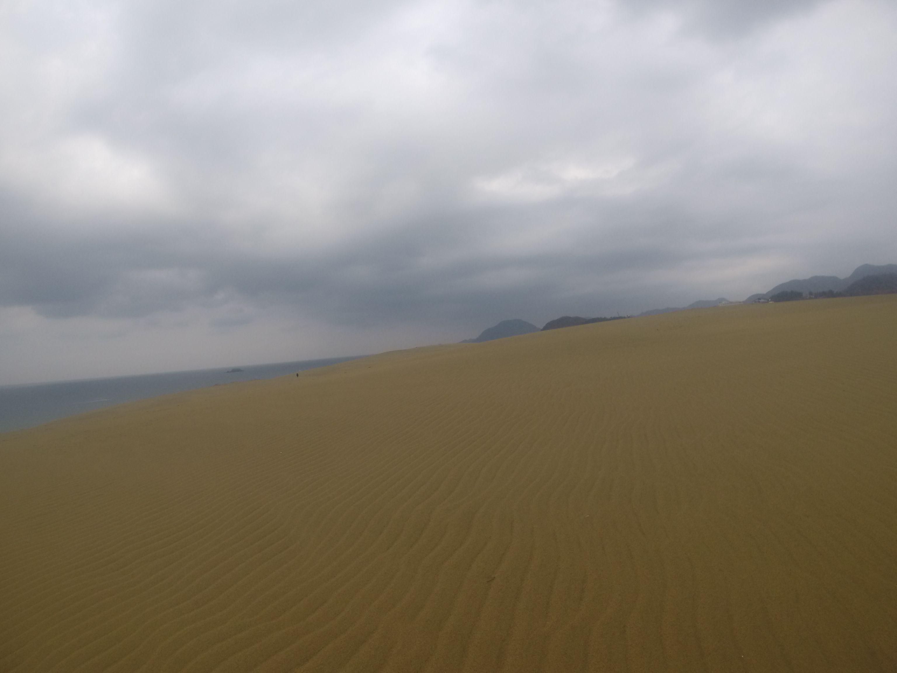 久しぶりに美しい風紋が広がった鳥取砂丘