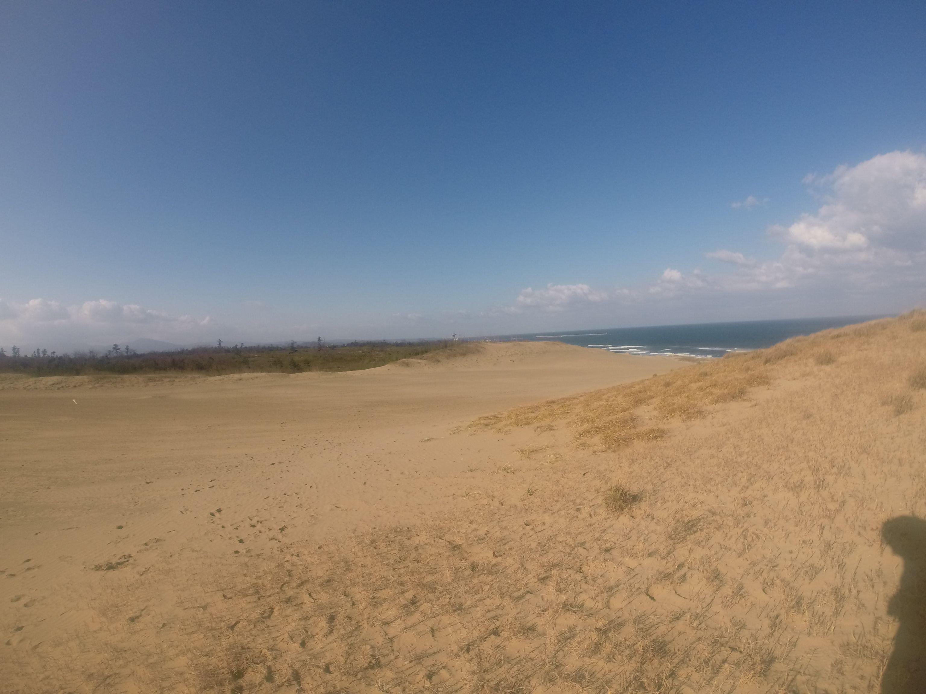貴重な青空が広がった鳥取砂丘