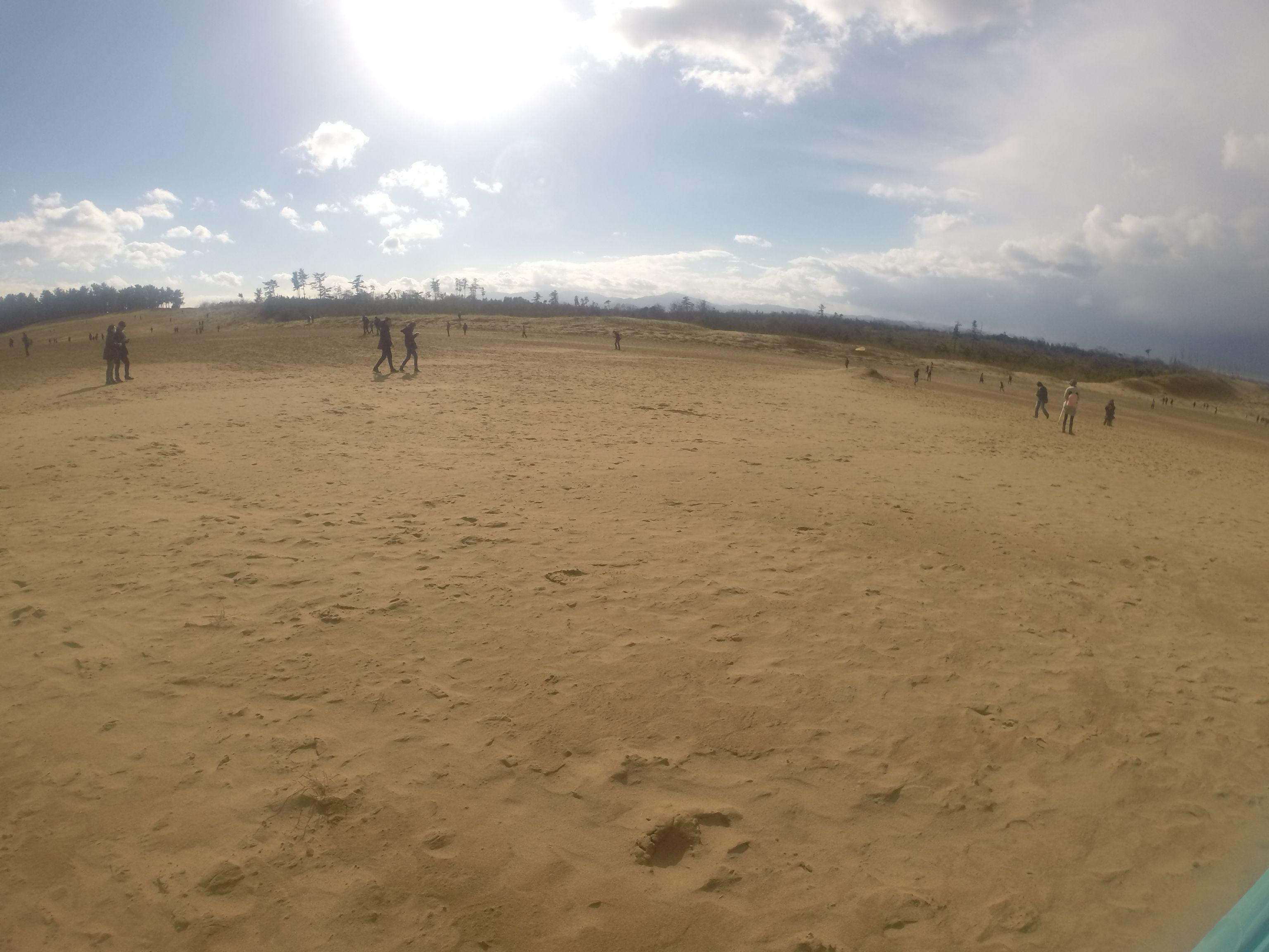 スマホを片手に、砂丘の隅々まで大移動