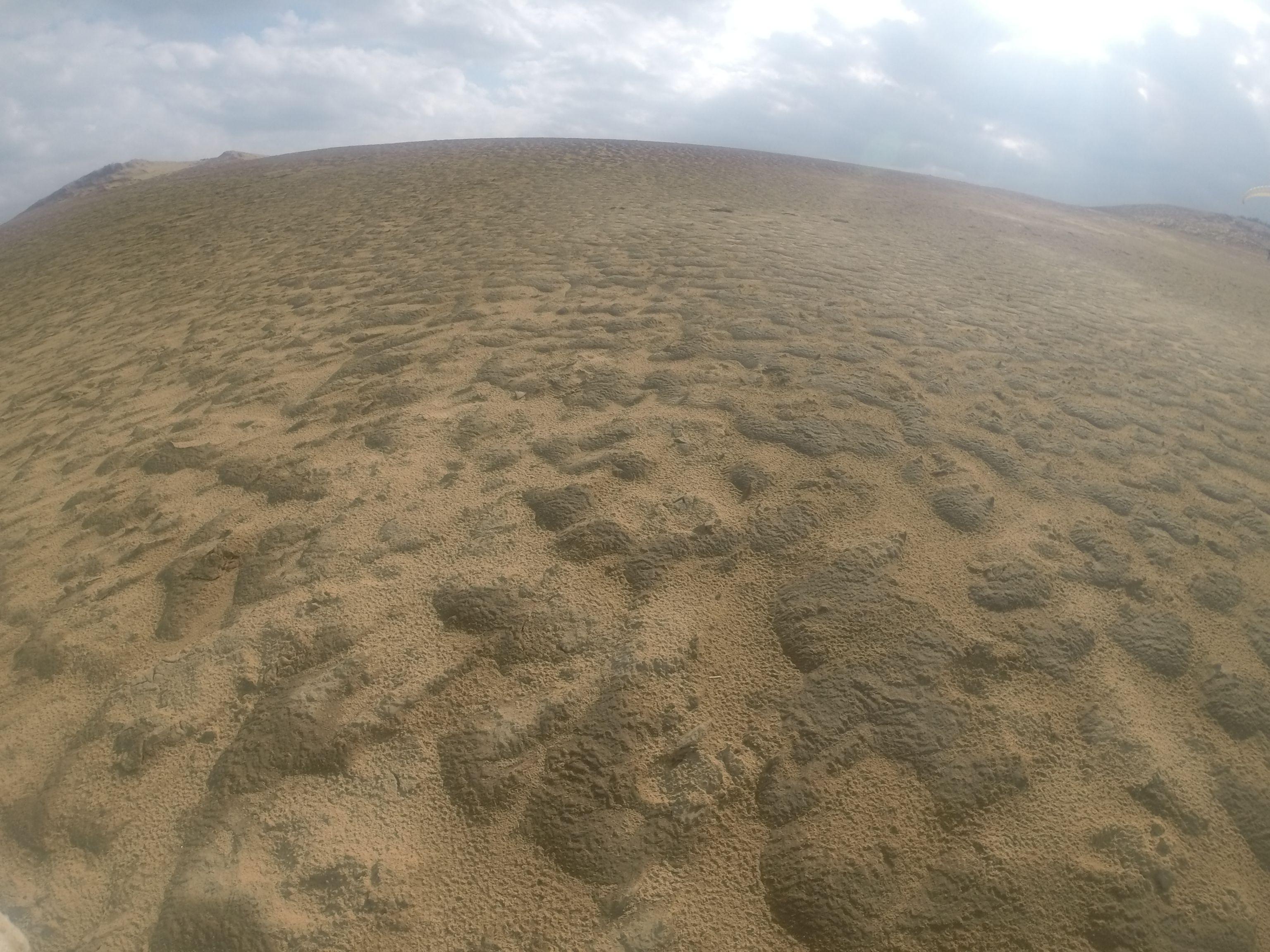 冷たい北風が吹き抜けた鳥取砂丘
