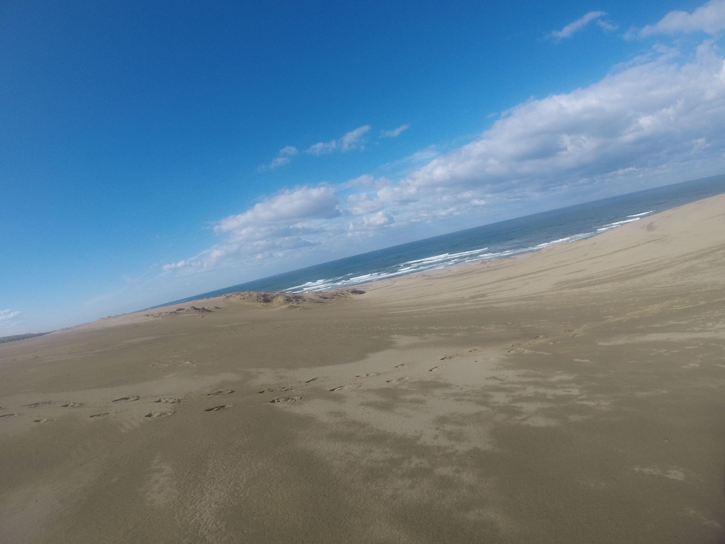 久しぶりにブルースカイとなった鳥取砂丘