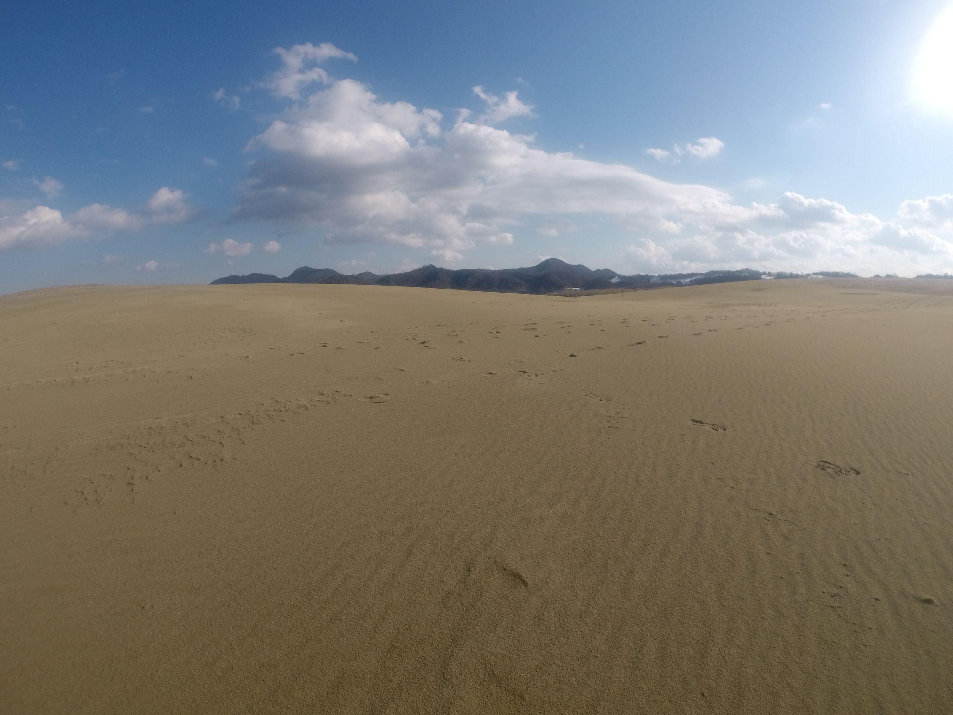 2日続けていいお天気となった鳥取砂丘