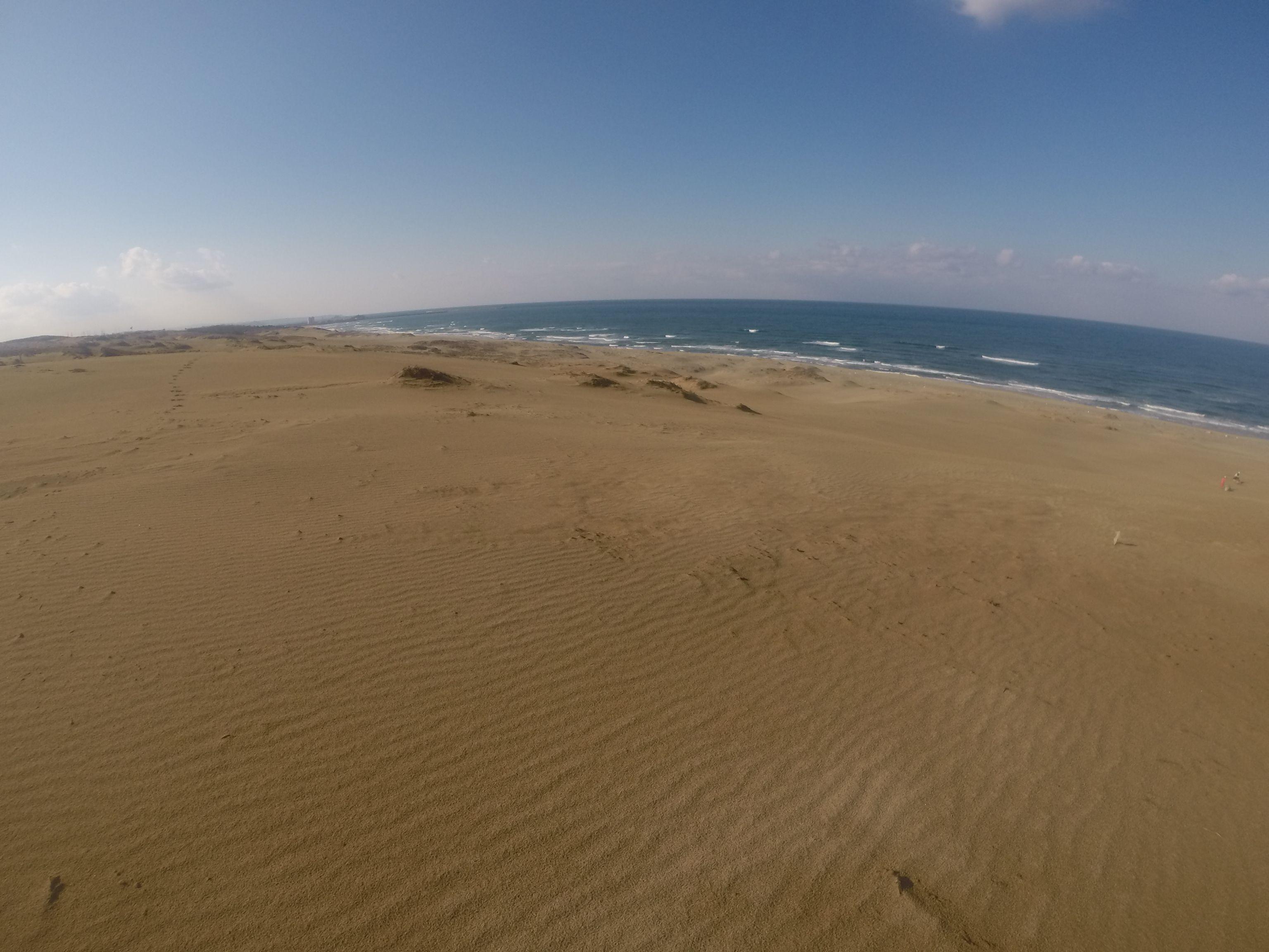 昼からは久しぶりの海風がそよそよ~