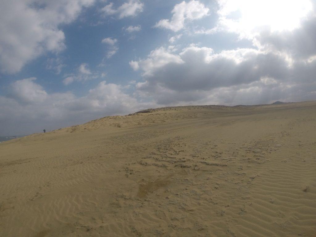 荒々しい表情を見せる砂丘の自然