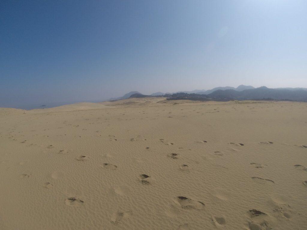夏のような陽気に包まれた鳥取砂丘