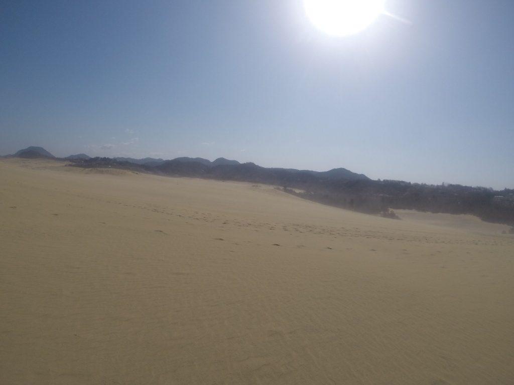 春らしく砂煙舞い上がる鳥取砂丘