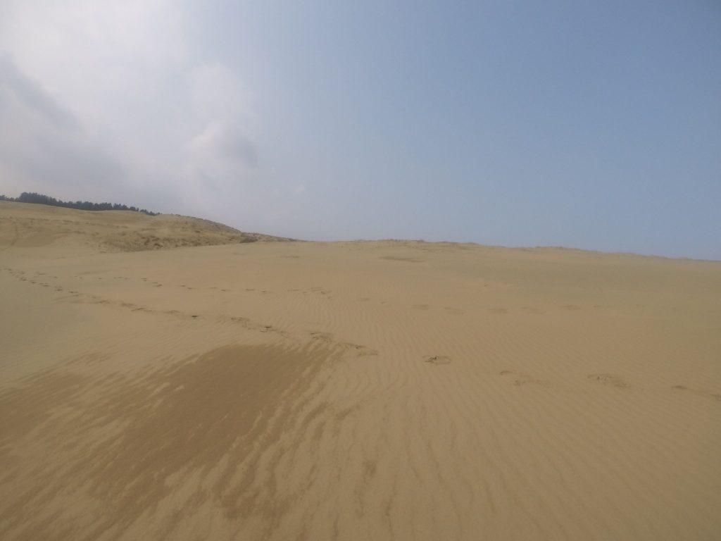 朗らかな陽気だった朝の鳥取砂丘