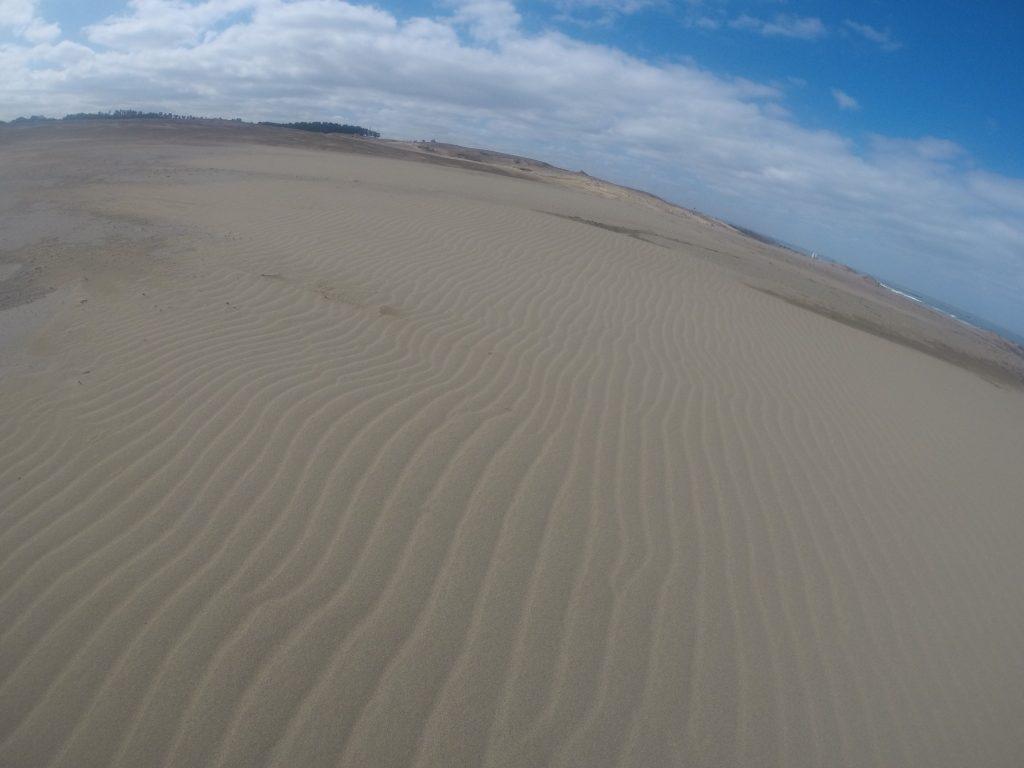 風紋がきれいな鳥取砂丘