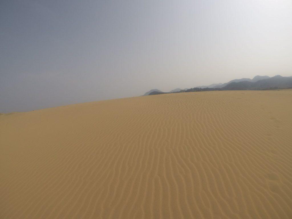 ガンガンに晴れた鳥取砂丘