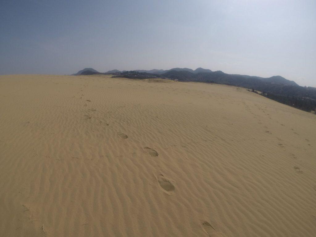 いつもより道のりが遠く感じられた鳥取砂丘